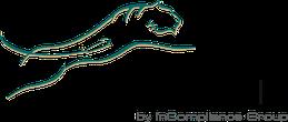 Leasedin - Conseil en optimisation financière et solutions de leasing
